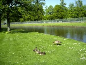 Northampton-2008-(1)
