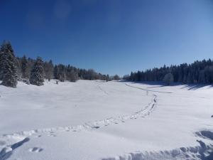 2.Plateau-de-Retort-(3)