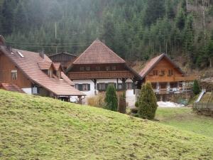 3.Schwarzwald