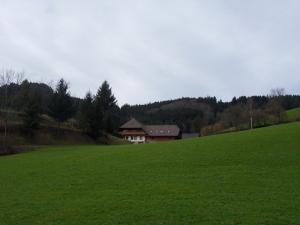 3.Schwarzwald-(3)