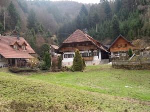 3.Schwarzwald-(1)