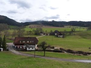3.Schwarzwald-(4)