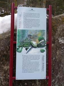 3a.Schwarzwald-(8)