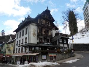 3c.Schwarzwald-(14)