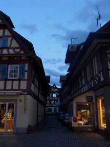 3e.Schwarzwald-(8)