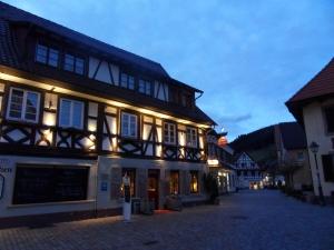 3e.Schwarzwald-(9)