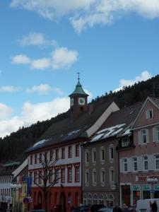 3c.Schwarzwald-(12)