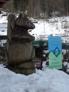 3a.Schwarzwald