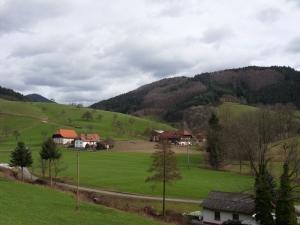 3.Schwarzwald-(5)