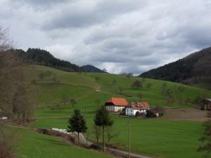 3.Schwarzwald-(7)