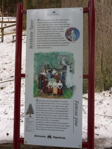 3a.Schwarzwald-(15)