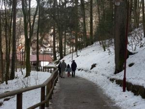 3a.Schwarzwald-(18)