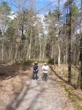 Fontainebleau avec Ông Ngoai (1)