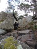 Fontainebleau avec Ông Ngoai (4)