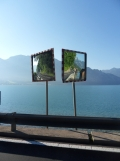 Am Attersee (10)
