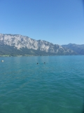 Am Attersee (107)