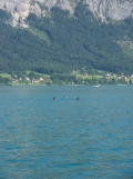 Am Attersee (110)