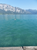 Am Attersee (113)