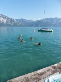 Am Attersee (115)
