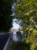 Am Attersee (123)