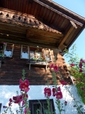 Am Attersee (45)