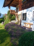 Am Attersee (49)