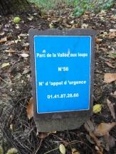 La Vallée aux loups (5)