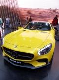 Mondial de l'Automobile (125)