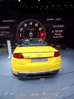 Mondial de l'Automobile (207)