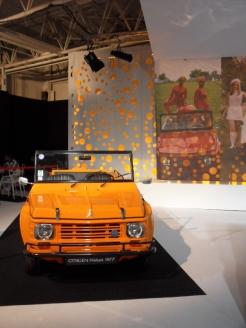 Mondial de l'Automobile (52)