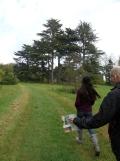 Arboretum Chèvreloup (27)
