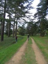 Arboretum Chèvreloup (32)
