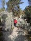 Fontainebleau - Les Trois Pignons (1)