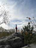Fontainebleau - Les Trois Pignons (16)