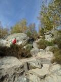 Fontainebleau - Les Trois Pignons (2)