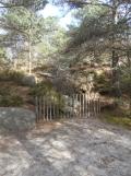 Fontainebleau - Les Trois Pignons (21)