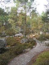 Fontainebleau - Les Trois Pignons (32)