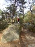 Fontainebleau - Les Trois Pignons (43)