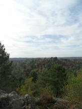 Fontainebleau - Les Trois Pignons (45)