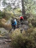 Fontainebleau - Les Trois Pignons (47)