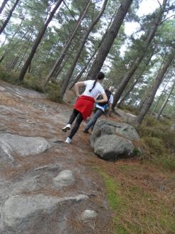 Fontainebleau - Les Trois Pignons (52)