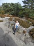 Fontainebleau - Les Trois Pignons (53)