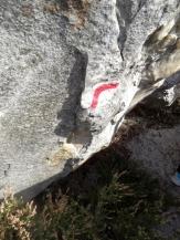 Fontainebleau - Les Trois Pignons (6)
