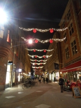 God Jul - Stockholm by night (19)