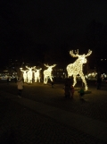 God Jul - Stockholm by night (3)