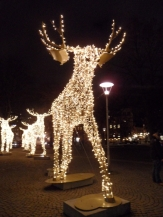 God Jul - Stockholm by night (5)