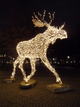 God Jul - Stockholm by night (6)