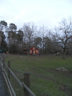 Skansen museet (100)