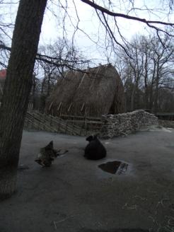 Skansen museet (112)