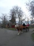 Skansen museet (71)